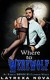 Where to Werewolf: An Erotic BDSM Halloween Short (Thirteen Kinks of Halloween)