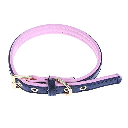 Seawang roze kant echt lederen huisdier kraag hond kraag hals riem gouden gesp, XS, Zwart