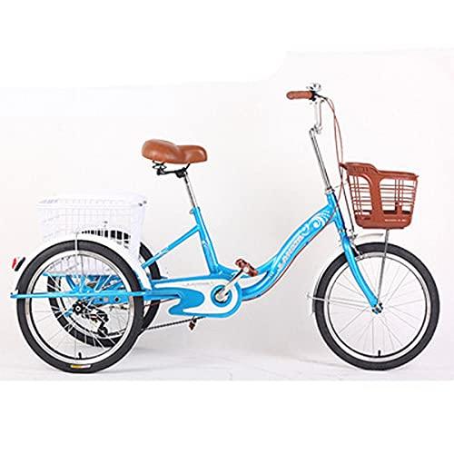 Adulto 3 Rueda Triciclo con CestaAl Aire Libre Deportes Ciudad Bicicleta Gente Mayor Pedaleados Adultos Grandes para El Regalo (Color : Blue)