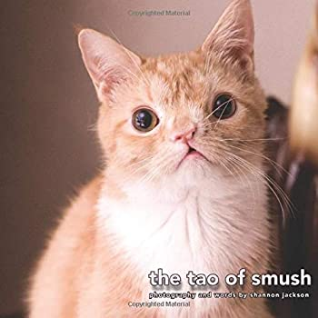 Paperback The Tao of Smush Book