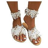 Sandali Bassi Donna Pantofole Piatte da Donna Scarpe Estive Da Spiaggia Infradito Donna Premium Comode Infradito Donna Eleganti Antiscivolo Moda Ciabatte