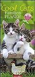 Cool Cats Familienplaner. Wandkalender 2020. Monatskalendarium. Spiralbindung. Format 22 x 48 cm