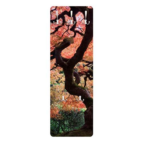 Apalis 67543Appendiabiti da Parete Giardino Giapponese, 139x 46cm