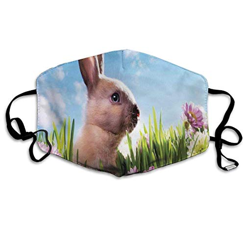 Fun-World Bequeme Winddichte Maske, blühende Blumen mit bunt bemalten Eiern und Flauschiger Hasen-Naturfotografie