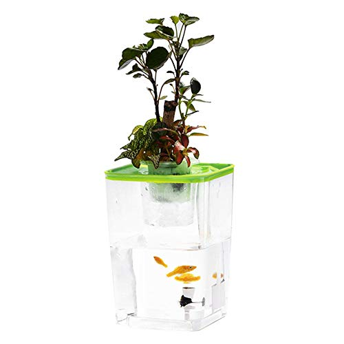 Lembeauty Mini-Fischtank für Fisch, Gemüse, Symbiotisches Wasser, Gras