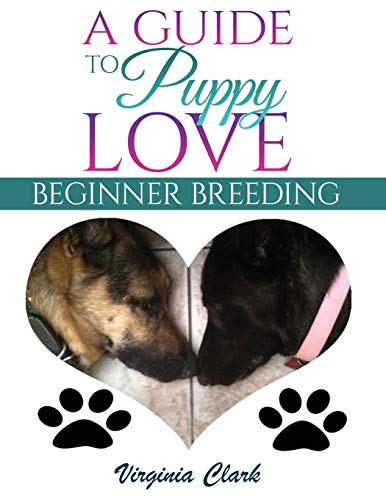 A Guide to Puppy Love: Beginner Breeding