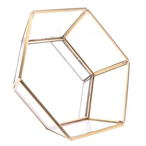 SDENSHI Vassoio Per Gioielli In Vetro Geometrico Organizzatore Per Trucco Per Fioriera Per Piante Grasse