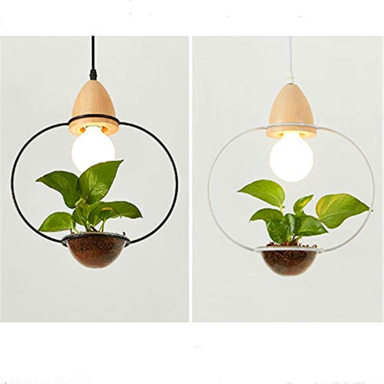 E27 Moderne Romantik Lndlichen Pendelleuchte Moderne Kreative Einfachheit Topf LED Pflanzenlampe Glas Schatten Licht Hngende Lampe Adjustable1M 110V-220V