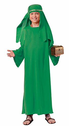 Forum Novelties Biblical Times Shepherd Green Costume Robe, Child Small