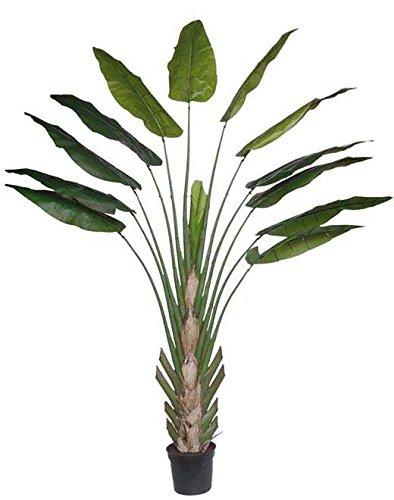 artplants - Heliconia Artificial KASIYA, 13 Hojas, Verde, 300cm - Planta exótica/Planta Decorativa sintética