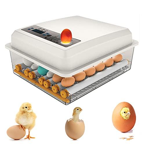 36 incubadora automática inteligente para gallinas, patos, gansos, indicador LED, autoencendido automático de huevos de laboratorio