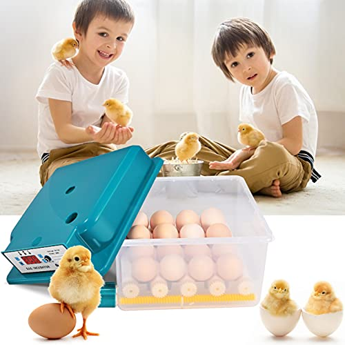 TTLIFE Incubadora de huevos, incubadoras de huevos eléctricas dobles automáticas para 16 huevos, escotillas de aves pequeñas con control de temperatura, giro automático, nacedora automática