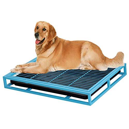 YXX Hundetoilette Welpentoilette Blau Jungen Hunde Toiletten Trainer Bodenschutzschalen, Potty Training Pee Pad Halter Für Hundekiste, Veranda & Terrassenbalkon Hunde Toilette (Size : Large)