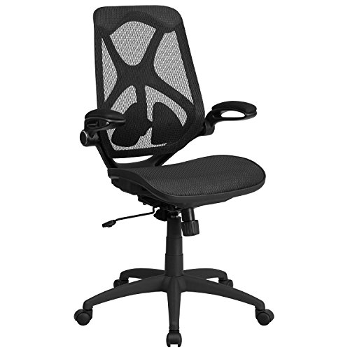 Flash Furniture High Back Transparent Black Mesh Executive Ergonomic Office Chair with Adjustable Lumbar, 2-Paddle Control & Flip-Up Arms, BIFMA Certified