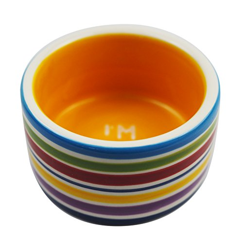 OMEM Hamster Food Bowl Ceramic Prevent Being Tipped Over Small Animal Water Dish for Guinea Pig Rodent Gerbil Cavy Hedgehog Feeding Bowl (Rainbow Stripe)