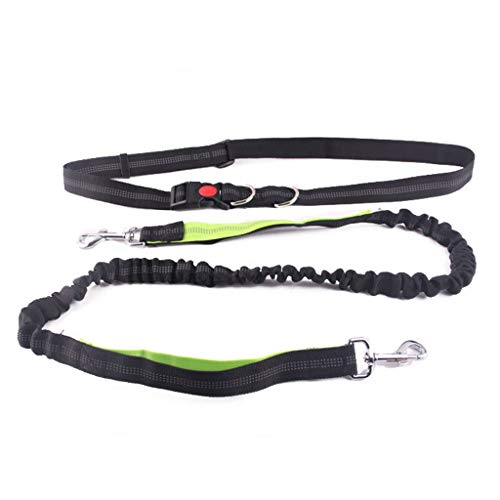 haninetrosty Adjustable Hands Free Dog Leash Durable for Running Jogging and Training Supplie