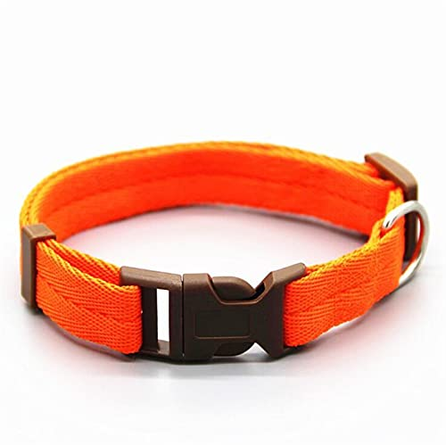 JHGJHG Cuello de Perro Pet Collar Ajustable Collares DE Perro Collares DE Perro (Color : Orange, Size : M)