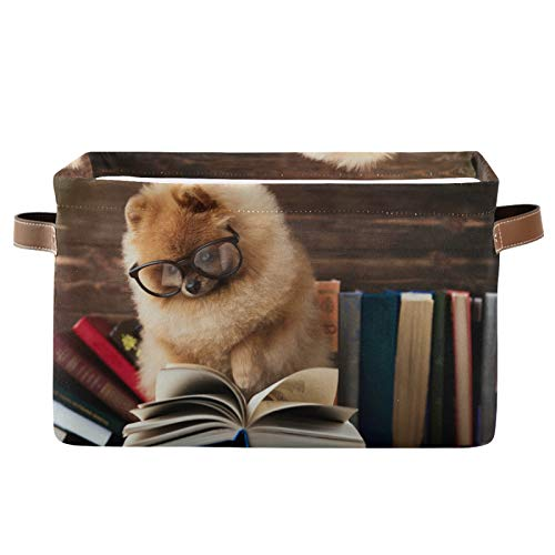 TropicalLife BGIFT Cesta de almacenamiento divertida para perros con diseño de animales, cubo de almacenamiento rectangular con asa, tela grande, plegable, organizador de juguetes, armarios, estantes