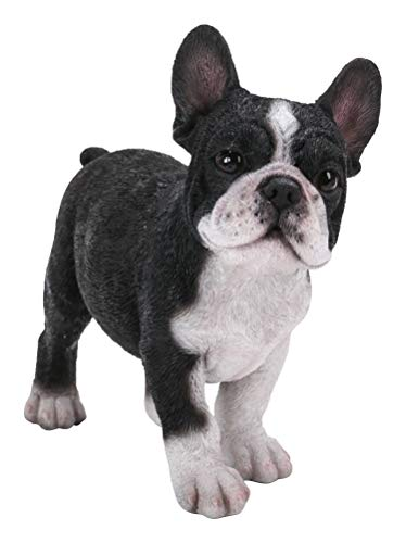 Pacific Giftware Realist Look French Bulldog Puppy Standing Resin Figurine Statue