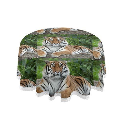 ALARGE Manteles redondos divertidos con diseno de tigre africano, 60 pulgadas, lavables, bordes de encaje, mantel para mesa de comedor, decoracion para el hogar, cumpleanos, fiesta de picnic