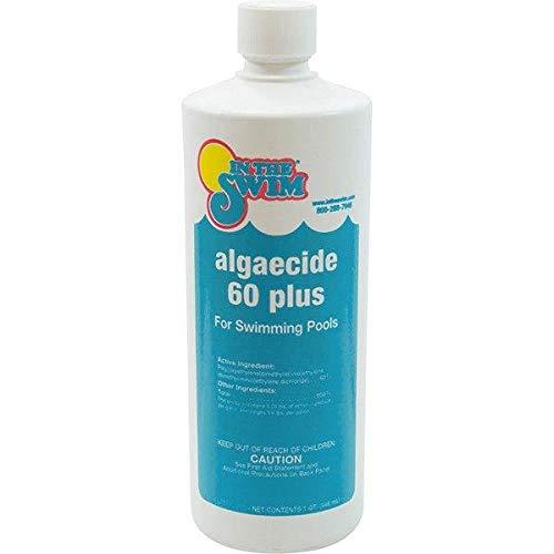 In The Swim Swimming Pool Algaecide 60 Plus - 1 Quart