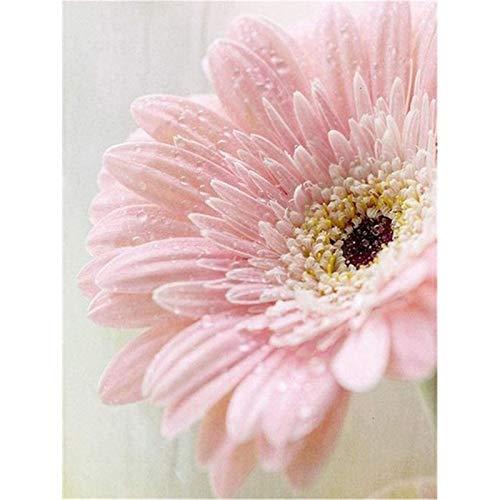 DIY 5D Pintura de Diamante taladro completo kit Hermosa flor Diamond Painting kit adultos punto de cruz rhinestone bordado diamante arte Para Decoración de la Pared del Hogar Square Drill,80x100cm