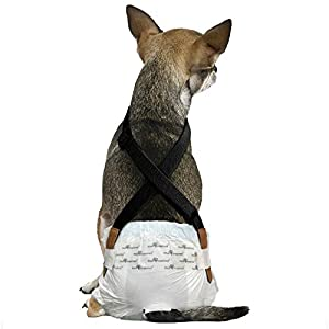 Paw Inspired Dog Diaper Suspenders | Belly Bands Canine Harness | Durable Dress & Diaper Keeper | Keep Diaper on Your Dog, for Small Medium and Large Dogs