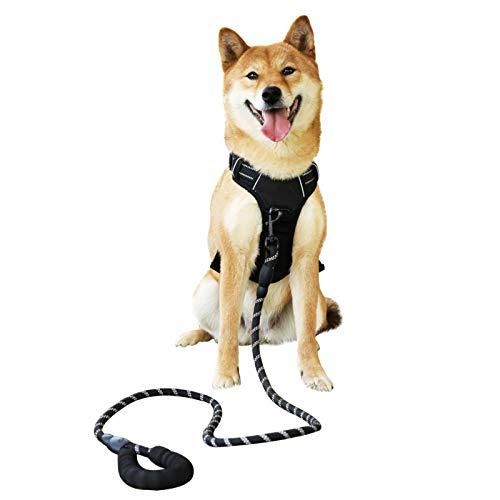 Raining Pet Hundegeschirr Hunde Geschirr für Große Hunde Anti Zug Geschirr No Pull Sicherheitsgeschirr Kleine Mittlere Hunde Brustgeschirr Schwarz M