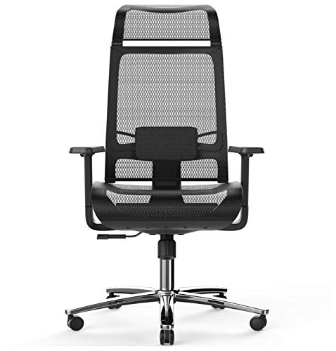 BILKOH Ergonomic Office Chair with Mesh Seat & Adjustable Lumbar Support, High Back Desk Chair with Breathable Mesh, Wide Headrest& Reclining Task Chair, Adjustable 3D Armrest & Height Computer Chair