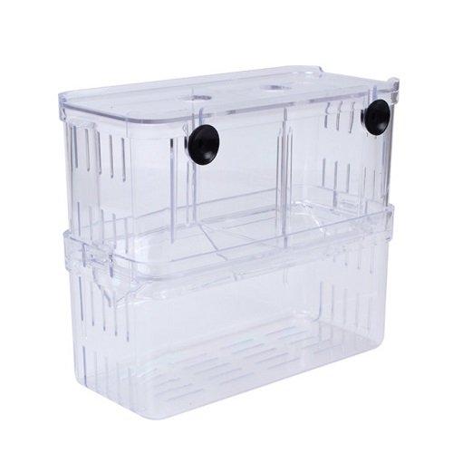 EFORCAR Vasche per allevamento di pesci guppy doppie, per schiusa, incubatrice d'isolamento, serbatoio in acrilico, mini acquario duraturo, grande, 1 pezzo