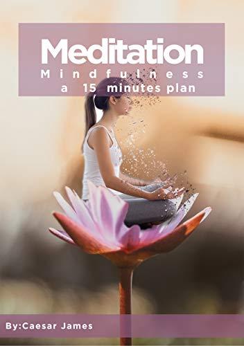 Meditation & Mindfulness a 15 Minutes Plan : The 2020 Meditation & Mindfulness book - by Caesar James