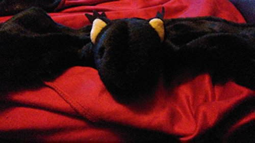 TY Beanie Baby - RADAR the Bat (4th Gen hang tag)