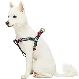 Blueberry Pet 10+ Patterns Spring Scent Inspired Floral Print/Camo Print Dog Harnesses