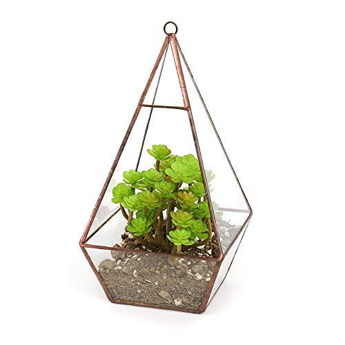 The Fellie Glas-Pflanzkasten zum Aufhängen Pyramidenform geometrisches Terrarium Sukkulenten-Display transparent dekorativer Pflanzgefäß Blumentopf 12 x 12 x 25 cm, Kupfer