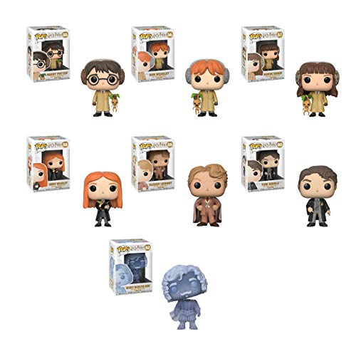 Harry Potter Herbology, Ron Weasley Herbology, Hermoine Granger Herbology, Ginny Weasley, Tom Riddle, Gilderoy Lockhart, and Nearly Headless Nick Blue Translucent Pop! Vinyl Figure set and Keychain. image