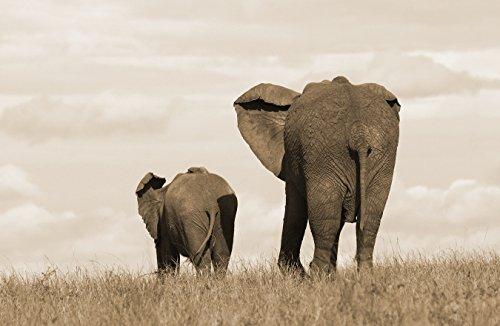 Bilderdepot24 Autoadhesivo Fotomural Elefante Madre y el niño - Sepia 230x150 cm - Directamente Desde el Fabricante