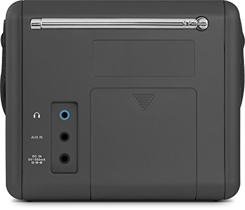 Nordmende Transita 110 - Tragbares DAB+ & UKW Digitalradio - Portable Musikbox mit OLED-Display - Outdoor Radio mit Tragegriff & Uhr