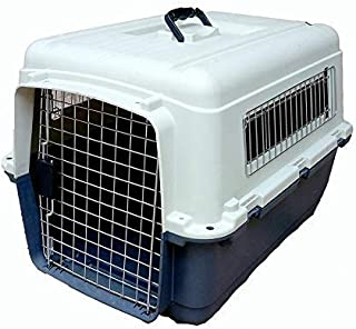 RvPaws Dog Plastic Flight Crate Iata Approved Pet Carrier, Traveler (22 inch)