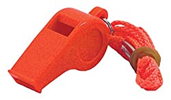 Image of Safety Whistle: Bestviewsreviews