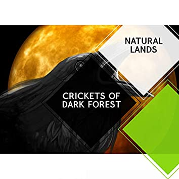 Crickets of Dark Forest - Natural Lands