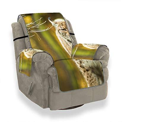 JEOLVP Eurasian Lynx Sofabezug Für Hunde Sofabezüge Sofakissen Einsätze Möbelschutz Für Haustiere, Kinder, Katzen, Sofa