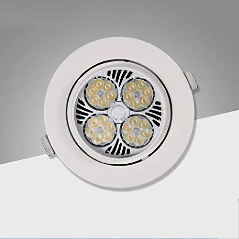 WLM Birnen-Anlage 24W Spot12 Wachsen die Lichter, die für Patios, Büros, Hausgrten, Gewchshuser justierbar Sind