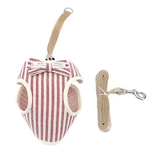 Hstyle Hundegeschirr mit Leine Set Welpen Verstellbar Geschirr Hund Weiches Mesh Weste Geschirre Reflektierend Atmungsaktiv Katzengarnitur