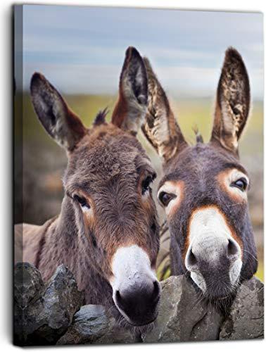 Vantboo Lienzo de burro marrón impresiones para pared, decoración del hogar, obras de arte para animales, sala de estar, dormitorio, baño, decoración lista para colgar, 40 x 50 cm