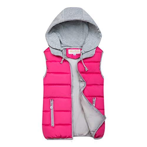 Zegeey Damen Westen Weste Hoodie Jacke Herbst Winter Warme Bequem Outwear Einfarbig Kapuzenpullover Kapuzenpullover、(Pink,46 DE/3XL CN)