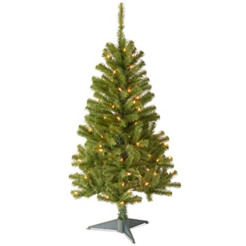 National Tree Company Pre-lit Artificial Mini Christmas Tree | Includes Pre-strung White Lights and Stand | Canadian Fir Grande - 4 ft