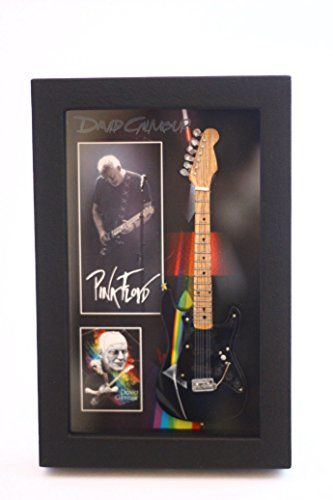RGM8827 David Gilmour Miniatur Guitar Collection in Shadowbox Frame