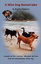 A Wise Dog Named Jake: Lessons on life, survival, tolerance and love from an extraordinary stray dog