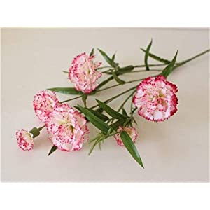 Artificial and Dried Flower 6 Head Artificial Flowers Plastic Fake Flower Carnation Silk Flower Decoration Sitting Room Cloth Art Adornment Flowers – ( Color: Color 2 )