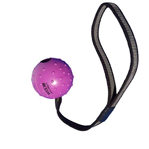 WEPO Hundespielzeug - Schleuderball mit Seil aus Naturkautschuk -für Welpen - Wurfball für Hunde- Welpenspielzeug - Ball mit Seil/Schnur- Lila